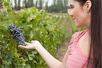 people in argentina - Woman looking at grapes Stock Photo - Premium Royalty-Freenull, Code: 6114-06598518