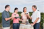 People wine tasting at vineyard Stock Photo - Premium Royalty-Free, Artist: CulturaRM, Code: 6114-06598548