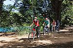 Four people cycling through forest Stock Photo - Premium Royalty-Free, Artist: CulturaRM, Code: 6114-06598575