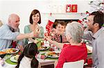 Family enjoying Christmas dinner Stock Photo - Premium Royalty-Free, Artist: Robert Harding Images, Code: 6114-06598845