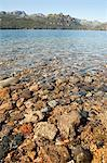 Stones in river in bariloche area of argentina Stock Photo - Premium Royalty-Free, Artist: Minden Pictures, Code: 6114-06599015