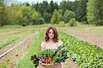 Young woman on farm with basket of vegetable produce Stock Photo - Premium Royalty-Free, Artist: Cultura RM, Code: 6114-06599847