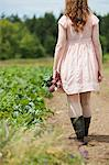Young woman in field with beets Stock Photo - Premium Royalty-Free, Artist: Cultura RM, Code: 6114-06599856