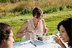 People at dinner party in a field Stock Photo - Premium Royalty-Freenull, Code: 6114-06599892
