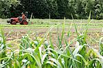 Field and farmer on tractor Stock Photo - Premium Royalty-Free, Artist: Raimund Linke, Code: 6114-06599918