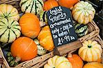 English gourds Stock Photo - Premium Royalty-Free, Artist: Westend61, Code: 6114-06600727