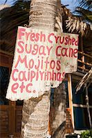 Beach hut cafe with sign in Quintana Roo, Caribbean Stock Photo - Premium Royalty-Freenull, Code: 6114-06601267