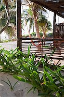 Beach hut in Quintana Roo, Caribbean Stock Photo - Premium Royalty-Freenull, Code: 6114-06601309