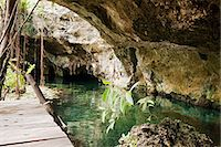 exotic outdoors - Grande Cenote, Quintana Roo, Tulum, Mexico Stock Photo - Premium Royalty-Freenull, Code: 6114-06601670