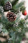 Pine cones on christmas tree Stock Photo - Premium Royalty-Free, Artist: Tomasz Rossa, Code: 6114-06603050