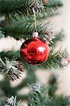 Bauble on christmas tree Stock Photo - Premium Royalty-Free, Artist: urbanlip.com, Code: 6114-06603060