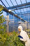 Scientist inspecting plants Stock Photo - Premium Royalty-Free, Artist: ableimages, Code: 6114-06603152