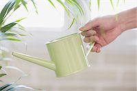 Person watering houseplant Stock Photo - Premium Royalty-Freenull, Code: 6114-06603560