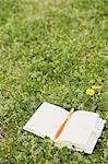 Diary in a field Stock Photo - Premium Royalty-Free, Artist: Robert Harding Images, Code: 6114-06603622