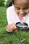 Girl looking at plastic spider with magnifying glass Stock Photo - Premium Royalty-Free, Artist: Cultura RM, Code: 6114-06603852