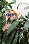 Woman using binoculars behind plant Stock Photo - Premium Royalty-Free, Artist: CulturaRM, Code: 6114-06604596