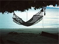 Hammock hanging from tree Stock Photo - Premium Royalty-Freenull, Code: 6114-06605834