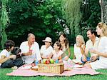 Family having a picnic Stock Photo - Premium Royalty-Free, Artist: ableimages, Code: 6114-06607474