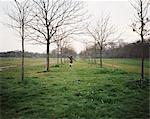 Boy running between trees in a field Stock Photo - Premium Royalty-Free, Artist: AWL Images, Code: 6114-06607724