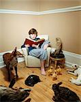 Boy reading story to stuffed animals Stock Photo - Premium Royalty-Free, Artist: CulturaRM, Code: 6114-06607735