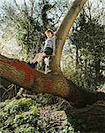 Boy standing in a tree Stock Photo - Premium Royalty-Free, Artist: R. Ian Lloyd, Code: 6114-06607755