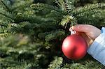 Child hanging bauble on christmas tree Stock Photo - Premium Royalty-Free, Artist: Raymond Forbes, Code: 6114-06608292