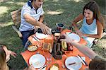 Friends dining outside Stock Photo - Premium Royalty-Free, Artist: RelaXimages, Code: 6114-06608457