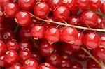 Redcurrants Stock Photo - Premium Royalty-Free, Artist: Alberto Biscaro, Code: 6114-06609387