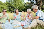 Senior friends having a picnic Stock Photo - Premium Royalty-Free, Artist: CulturaRM, Code: 6114-06610304