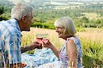 Couple toasting with wine in the countryside Stock Photo - Premium Royalty-Free, Artist: Blend Images, Code: 6114-06610318