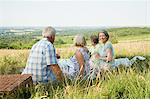 Friends having a picnic in a field Stock Photo - Premium Royalty-Free, Artist: Cultura RM, Code: 6114-06610323