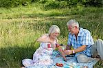 Couple having a picnic Stock Photo - Premium Royalty-Free, Artist: Photocuisine, Code: 6114-06610346