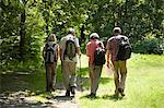 Ramblers walking in countryside Stock Photo - Premium Royalty-Free, Artist: Kablonk! RM, Code: 6114-06610349