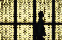 pattern (man made design) - Silhouetted person agains screen doors Stock Photo - Premium Royalty-Freenull, Code: 6114-06610902