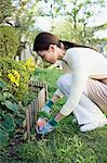 Woman gardening Stock Photo - Premium Royalty-Free, Artist: Aflo Relax, Code: 6114-06611310