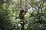 Young woman walking through forest Stock Photo - Premium Royalty-Free, Artist: Daisy Gilardini, Code: 6114-06611946