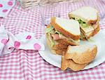 Sandwich at a picnic Stock Photo - Premium Royalty-Free, Artist: Blend Images, Code: 6114-06612021