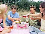 Friends having a picnic Stock Photo - Premium Royalty-Free, Artist: RelaXimages, Code: 6114-06612033
