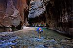 Man hiking in The Narrows in Zion National Park Stock Photo - Premium Royalty-Free, Artist: Transtock, Code: 6106-06614892