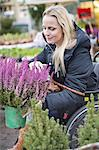 Disabled woman in wheelchair choosing plants at garden center Stock Photo - Premium Royalty-Freenull, Code: 698-06616017