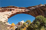 Natural Bridges National Monument, Utah, United States of America, North America Stock Photo - Premium Rights-Managed, Artist: Robert Harding Images, Code: 841-06616625
