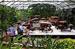 The collection of cars of Pablo Escobar, Ranch Napoles, Medellin, Colombia, South America Stock Photo - Premium Rights-Managed, Artist: Robert Harding Images, Code: 841-06616733