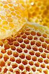 Honeycombs, extreme closeup Stock Photo - Premium Royalty-Free, Artist: Science Faction, Code: 618-06618537