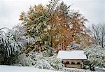 House and trees in snowy landscape Stock Photo - Premium Royalty-Free, Artist: Robert Harding Images, Code: 649-06622339