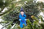 Boy standing in Christmas tree lot Stock Photo - Premium Royalty-Free, Artist: Blend Images, Code: 649-06622453