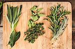 Board with whole leaf herbs Stock Photo - Premium Royalty-Free, Artist: Photocuisine, Code: 649-06622966