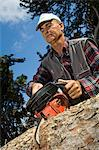 Man sawing log Stock Photo - Premium Rights-Managed, Artist: F1Online, Code: 853-06623206