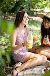 Women picnicking together in park Stock Photo - Premium Royalty-Free, Artist: Cultura RM, Code: 614-06623577