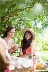 Women picnicking together in park Stock Photo - Premium Royalty-Free, Artist: CulturaRM, Code: 614-06623578