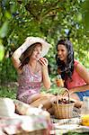 Women picnicking together in park Stock Photo - Premium Royalty-Free, Artist: CulturaRM, Code: 614-06623583